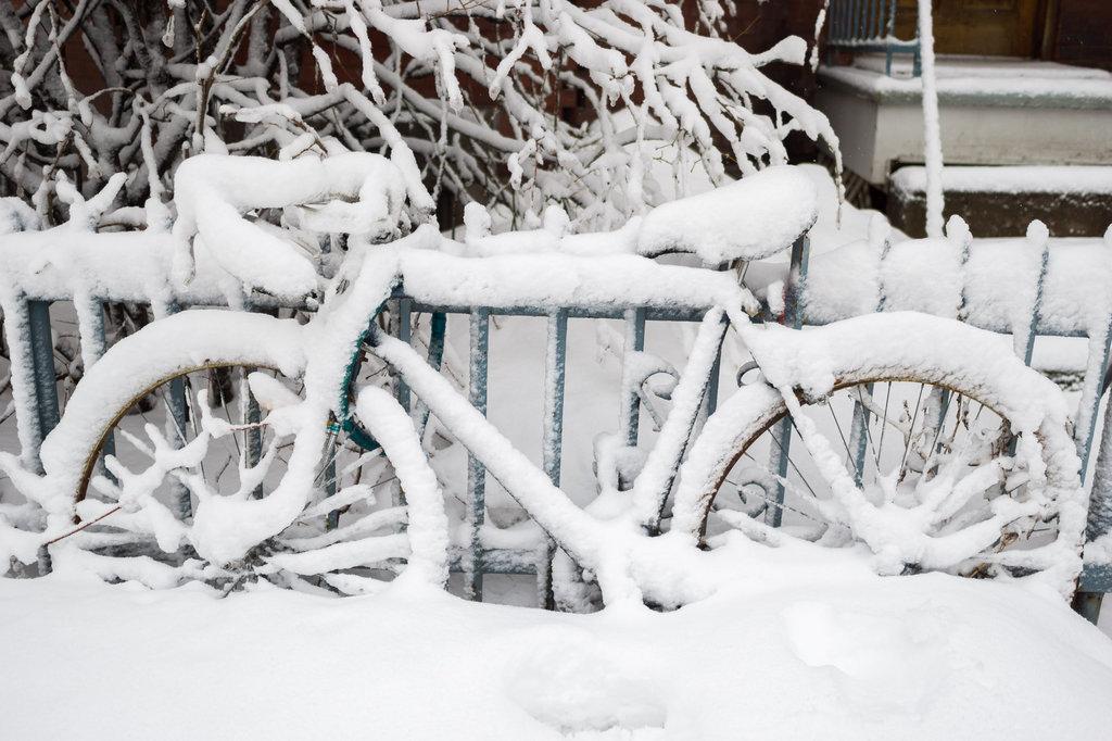neige-du-28-fevrier-5.jpg
