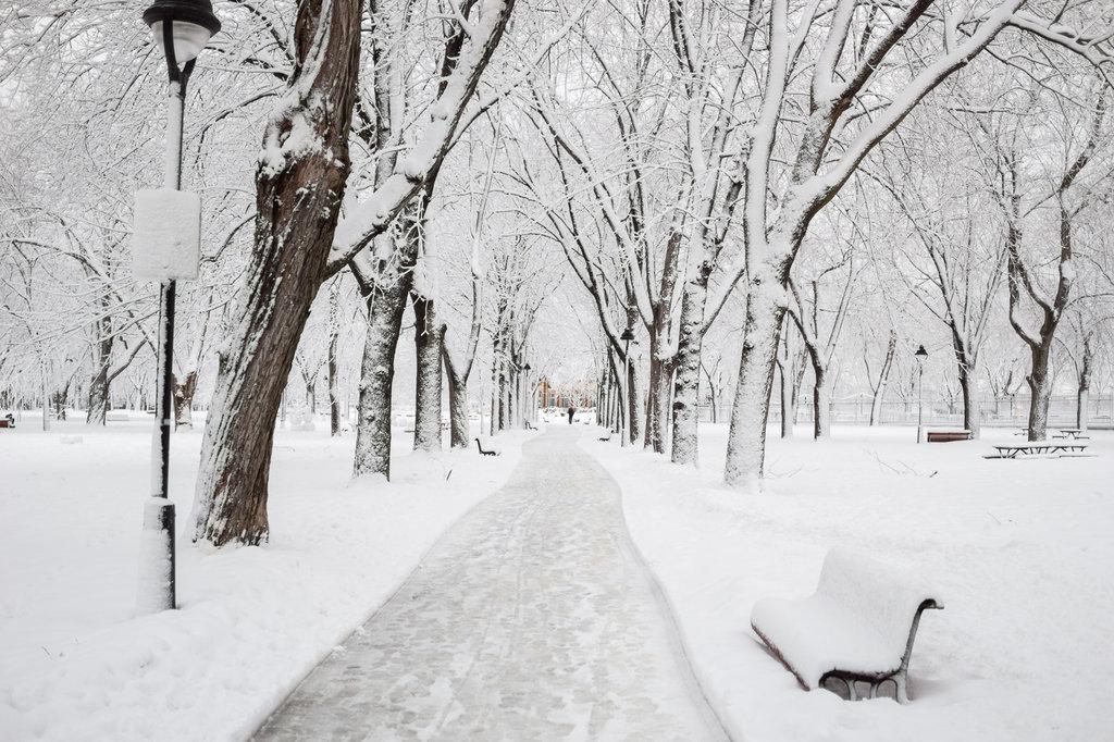 neige-du-28-fevrier-10.jpg