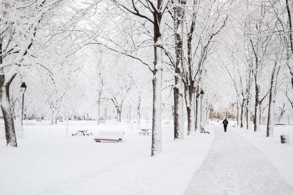 neige-du-28-fevrier-12.jpg