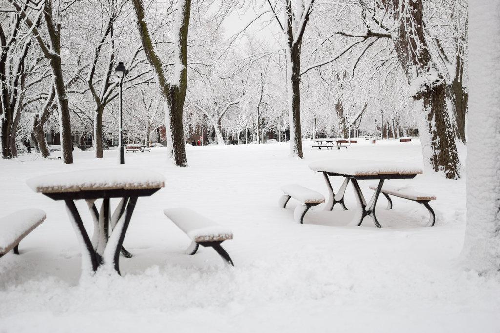 neige-du-28-fevrier-15.jpg