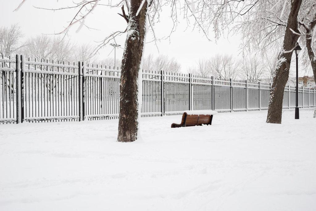 neige-du-28-fevrier-16.jpg