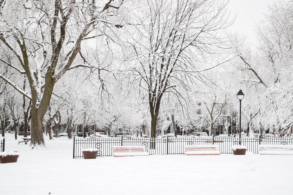 neige-du-28-fevrier-18.jpg