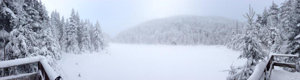 Vue du Lac Spruce