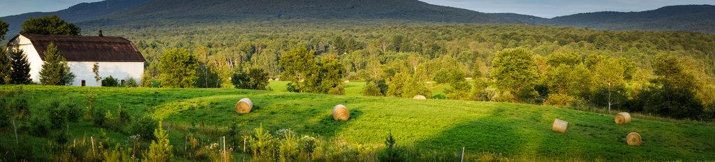 sutton-panoramique-2.jpg